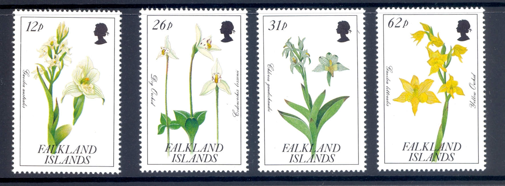 Falkland Islands SG 629-32 Orchids set from 1991 MNH