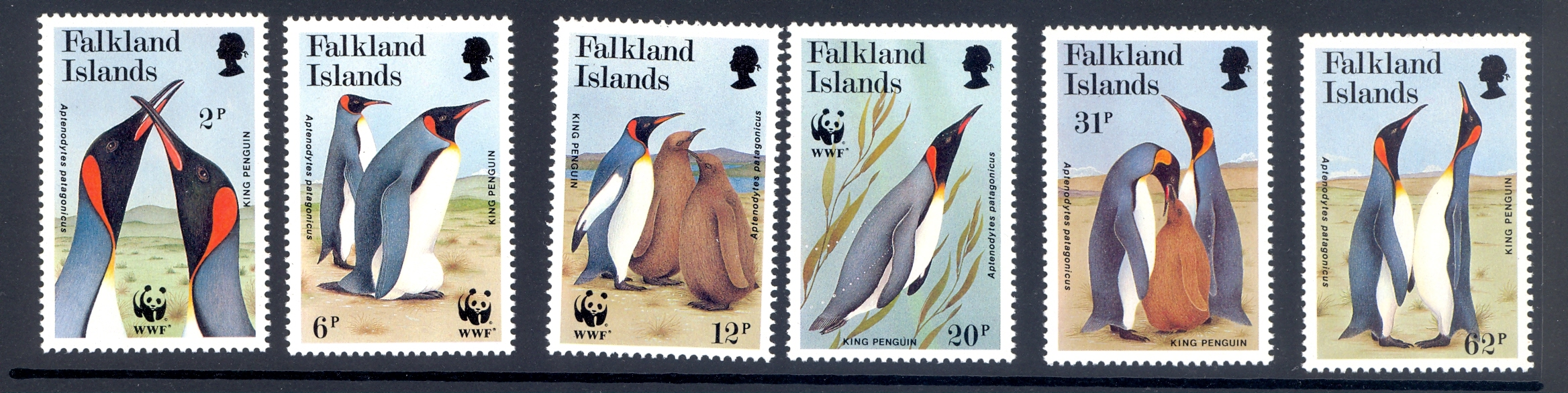 Falkland Islands SG 633-8 Endangered Species set from 1991 MNH
