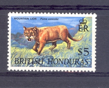 British Honduras SG 267 1968 $5 Mountain Lion. Unmounted Mint