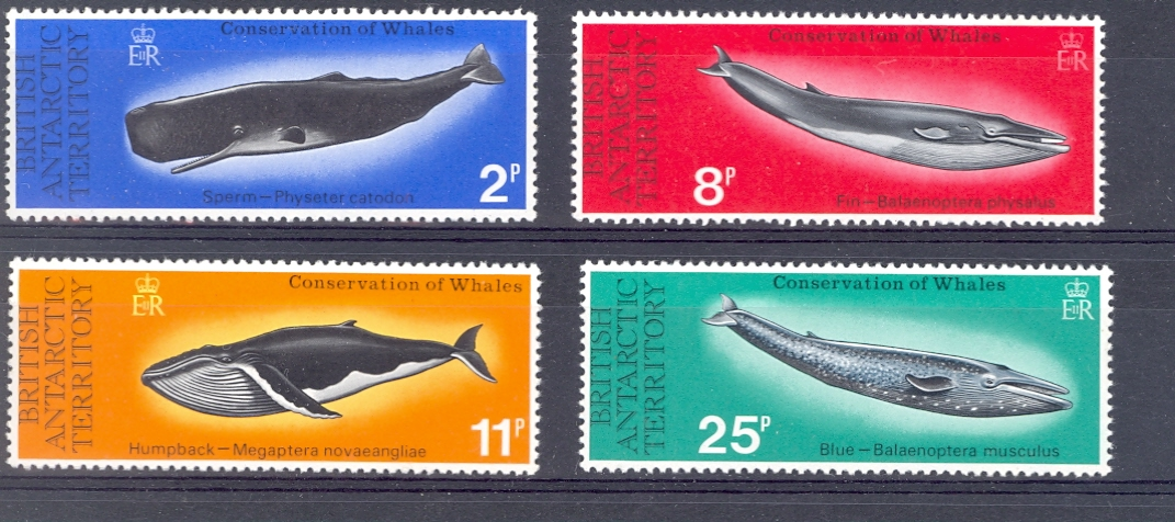 British Antarctic Territory SG 79-82 1977 Whales Set Unmounted Mint