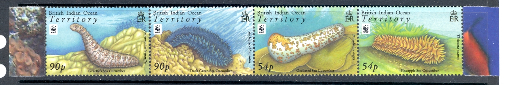 British Indian Ocean Territory SG 392-39 2008 Sea Slugs. Unmounted Mint