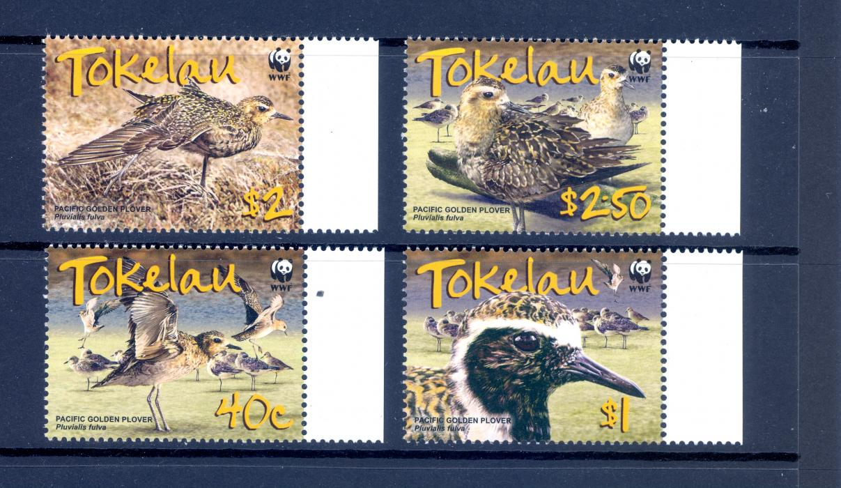 Tokelau 2007 WWF Endangered Species. Pacific Golden Plover SG 382-385. MNH
