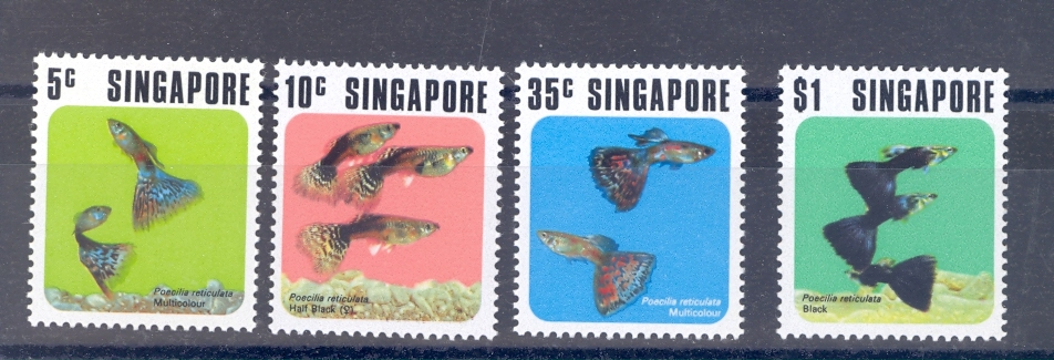 Singapore SG 229-32   1974 Tropical Fish Set. MNH