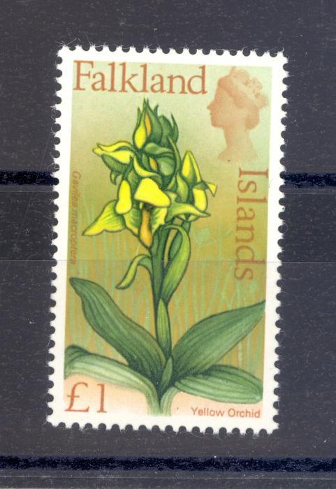Falkland Islands SG 245 1968 �1 Yellow Orchid. MNH