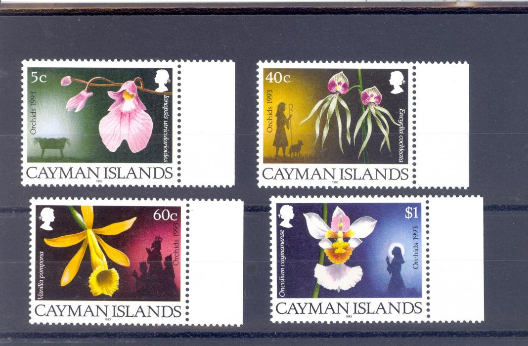 Cayman Islands SG 769-72  1993 Christmas Orchids  Set MNH