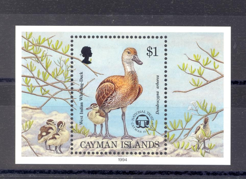 Cayman Islands SG MS 783 1994 Duck Miniature Sheet MNH