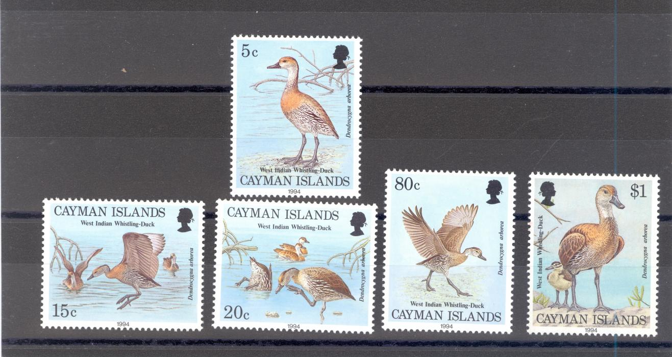 Cayman Islands SG 778-82 1994 Ducks Set MNH